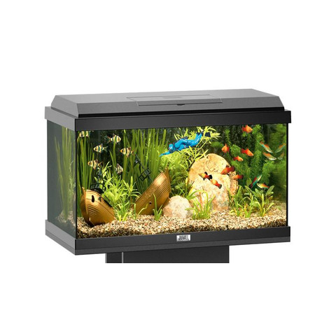 Juwel korall 60 tropical aquarium tank 54 litres kennelgate for Decoration aquarium 60 litres