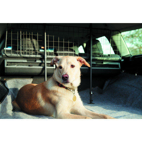 Mountney Universal Car Dog Mesh Guard Standard