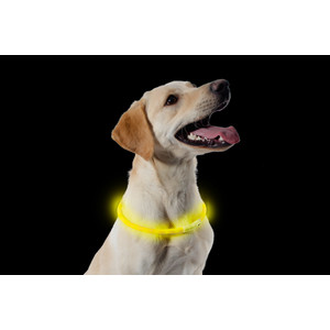 Ancol High Visibility Halo Safety Band Yellow Flashing Dog Collar One Size