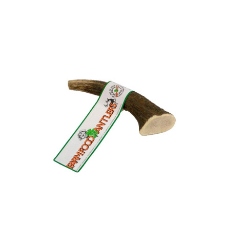 Deer Antler Natural Dog Chew 12 X Small To Small