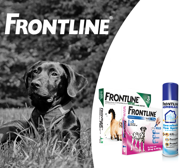 Frontline Flea & Tick Protection