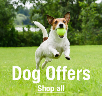 Shop Dog Offers