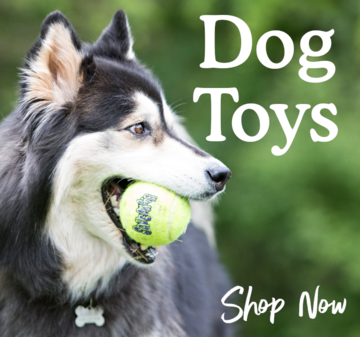 Shop all Dog Toys