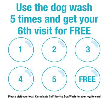 Dog Wash Locations