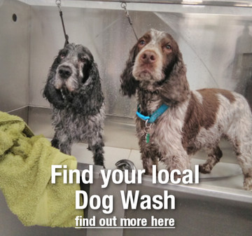 Self service dog wash dryer at kennelgate pet superstore dog wash pricing solutioingenieria Images