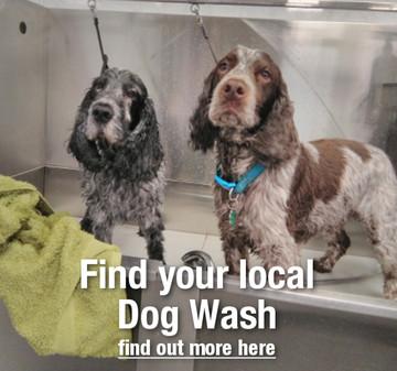 Dog Wash Pricing