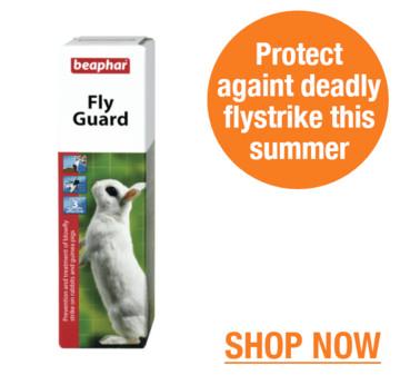 Protect Against Flystrike