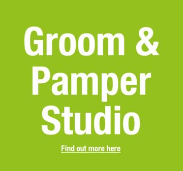 Groom & Pamper