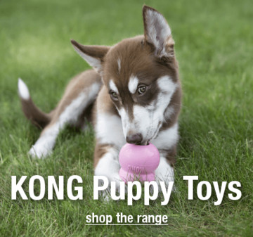 Kong Puppy Toys