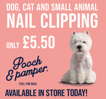 Dog Cat Small Animal Nail Clipping only £5.50