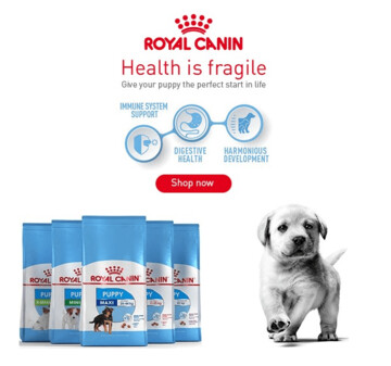 Shop for Royal Canin Puppy