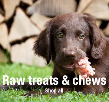 Raw treats and chews