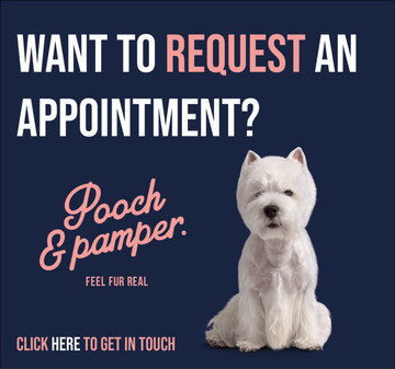 Request a Pooch & Pamper Appointment