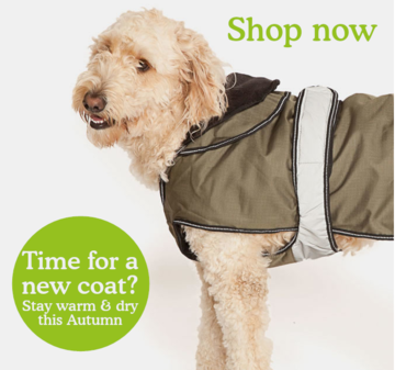 shop dog coats
