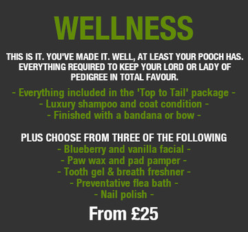 Wellness Pamper Pricing