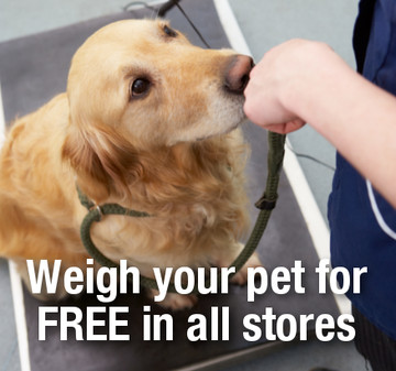Weight your pet in store for free