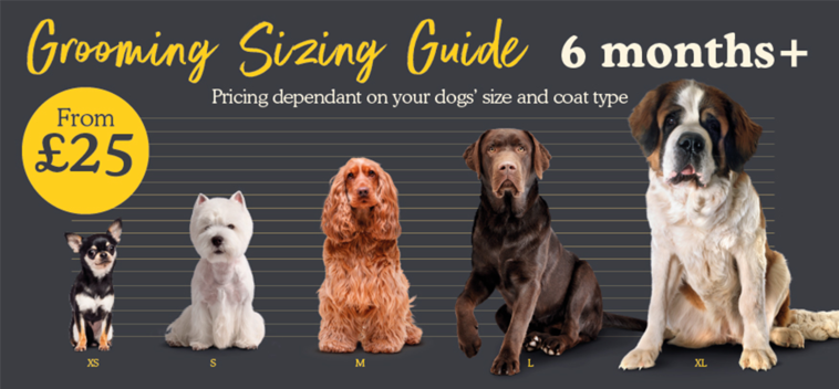 Grooming Sizing Guide