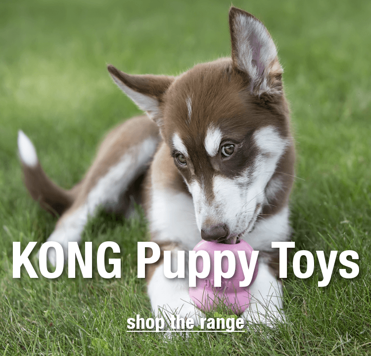 Dog Toys Online + FREE UK Delivery over £39