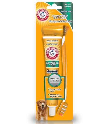 arm and hammer dental kit for dogs