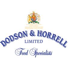 Dodson & Horrell Flint Grit Fine/medium 25kg