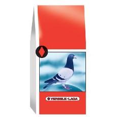 Versele Laga Breeding Extra Sublime Pigeon Feed 25kg