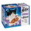 Felix Standard Adult Cat Pouch Mixed Variety 12x100g