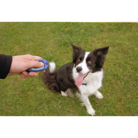 The Company Of Animals Clix Training Multi Clicker