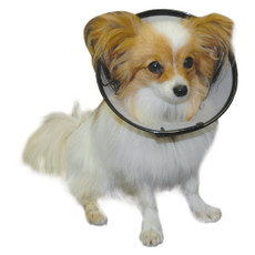 The Company Of Animals Elizabethan Cone Style Smart Collar 16-25cm