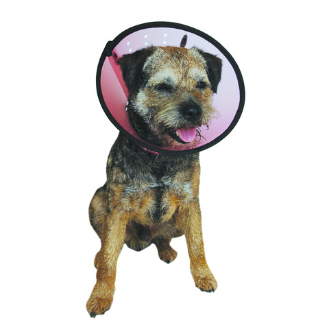 The Company Of Animals Elizabethan Cone Style Smart Collar 25-31cm