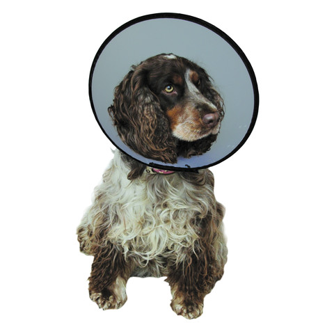 The Company Of Animals Elizabethan Cone Style Smart Collar 31-40cm