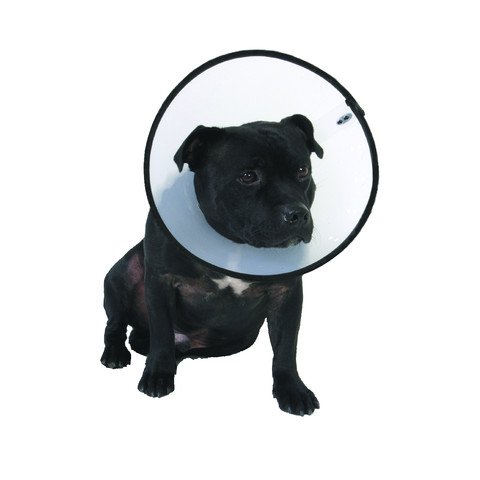 The Company Of Animals Elizabethan Cone Style Smart Collar 40-56cm