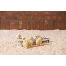 Savic Daisy Chick Trough Feeder