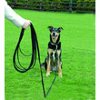 The Company Of Animals Clix Recall Long Line Training Dog Lead 5 Metres