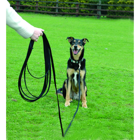 The Company Of Animals Clix Recall Long Line Training Dog Lead 10 Metres