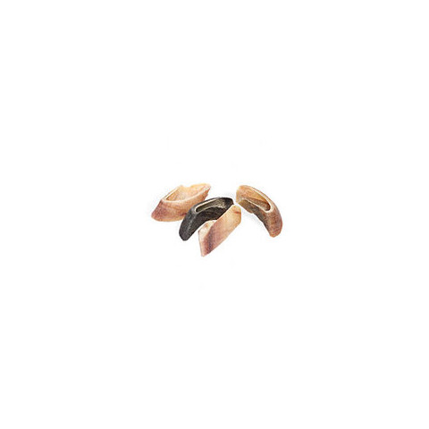 Hollings Plain Unfilled Cow Hooves 25 Pack