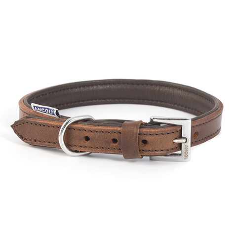 Ancol Heritage Padded Vintage Chestnut Leather Buckle Dog Collar 35cm To 70cm