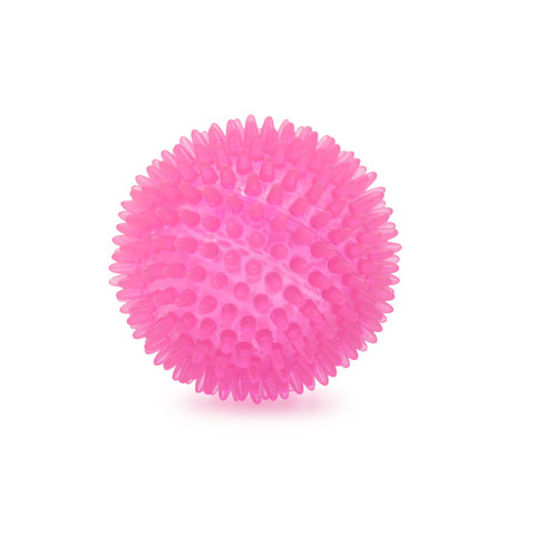 (d)ancol Spikey Ball Dog Toy