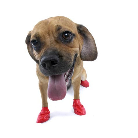 Pawz Natural Rubber Waterproof Resusable Dog Boots Small