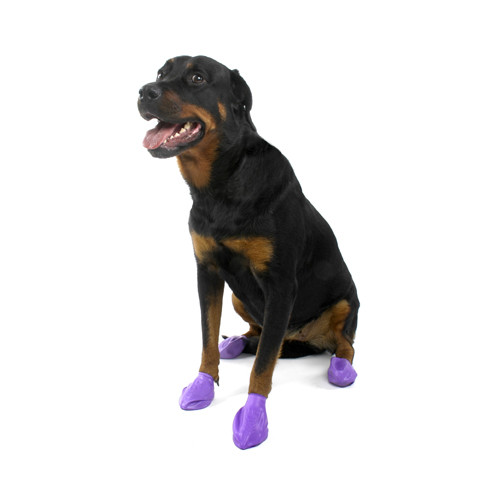 Pawz Natural Rubber Waterproof Resusable Dog Boots Large