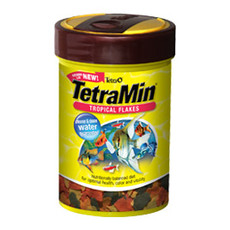 Tetramin Tropical Flakes 20g