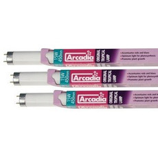 Arcadia Original Tropical Lamp Fluorescent Tube 15w