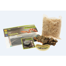 Komodo Basic Hatchling Kit And Terrarium