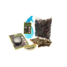 Komodo Basic Millipede Kit And Terrarium