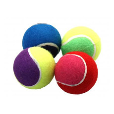 Tennis Ball 4 Pack Dog Toy