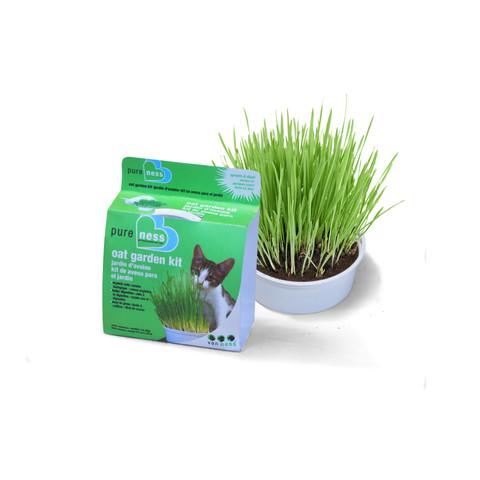 Van Ness Grow Your Own Organic Oat Grass Garden Kit 28gm To 6 X 28gm