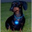 Rogz Roglite High Visibility Blue Flashing Collar Tag
