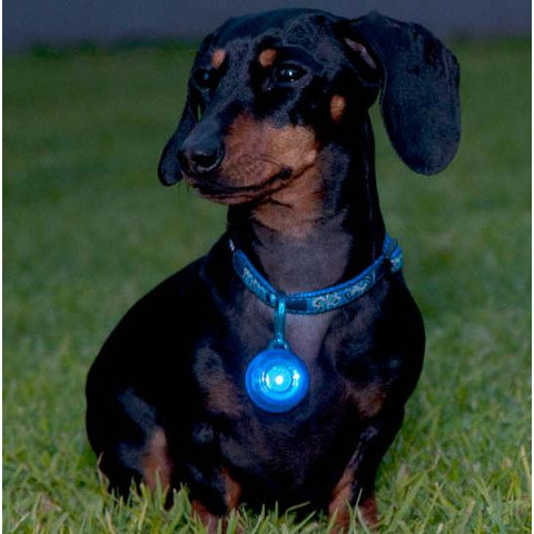 Rogz Roglite High Visibility Blue Flashing Collar Tag