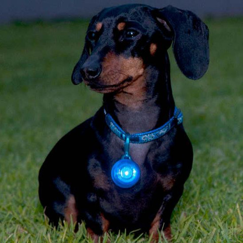 Rogz Roglite High Visibility Red Flashing Collar Tag