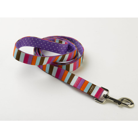 "(d)yellow Dog Design Uptown Multi Stripe Dog Lead 48""x1"""