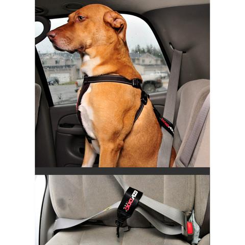 Ezy Dog Blue Chest Plate Dog Harness Medium